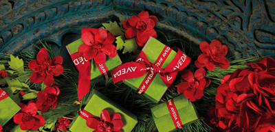 Holiday Shopping Hours at Details SalonSpa