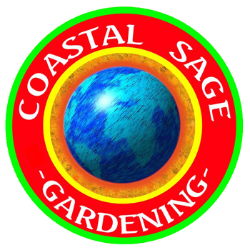 Coastal Sage Gardening Ocean Beach