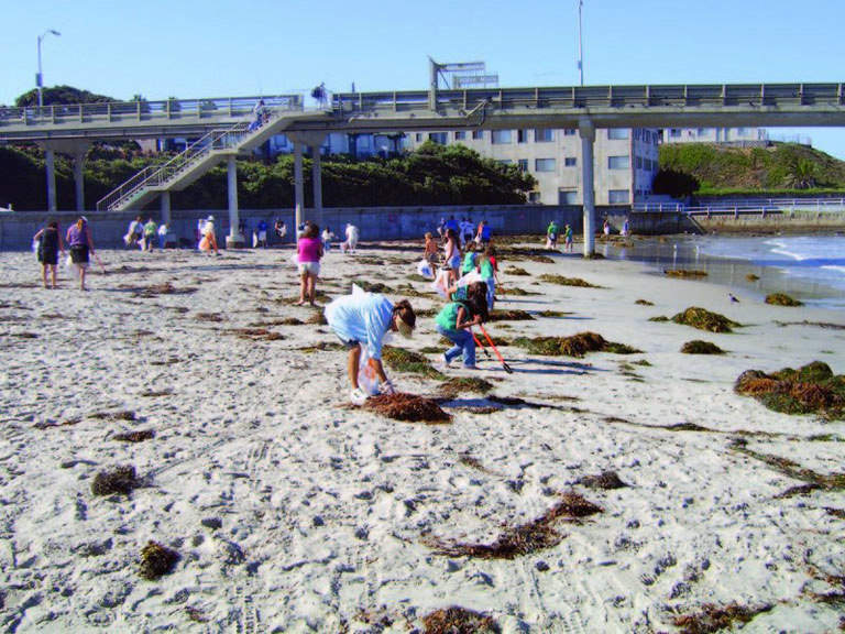 Surfrider Creek to Bay Cleanup