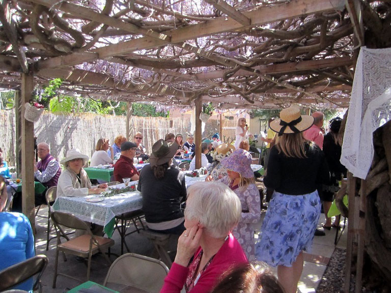 Wisteria Party: OB Historical Society