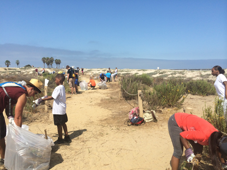 Coastal Habitat Restoration with San Diego River Park Foundation