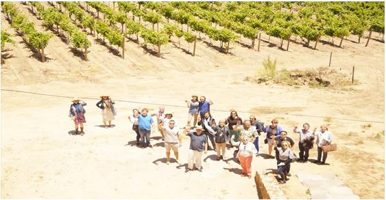 Valle de Guadalupe Tour with The Wine Pub