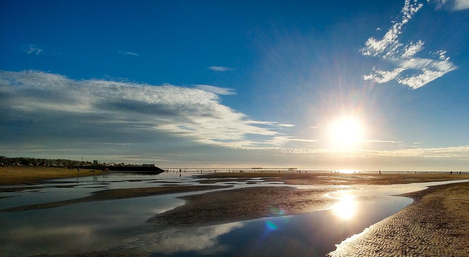 Photo of: Dog Beach