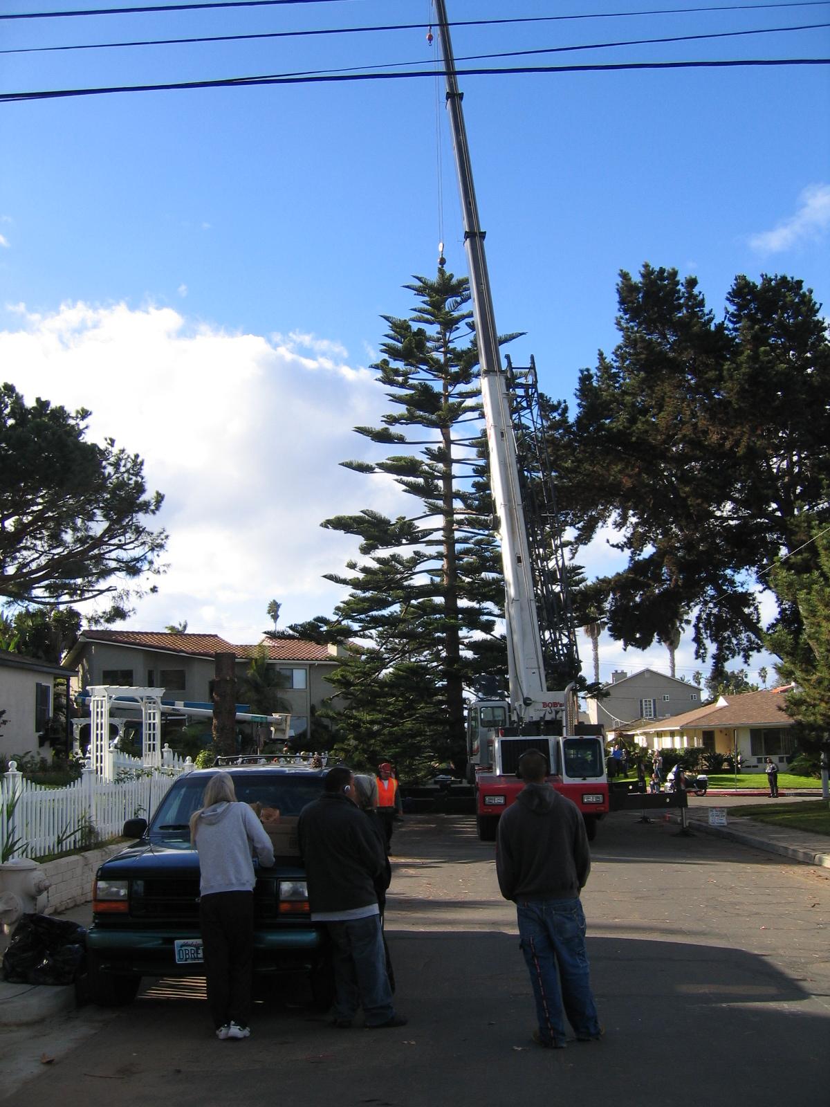 OB Christmas Tree 2006