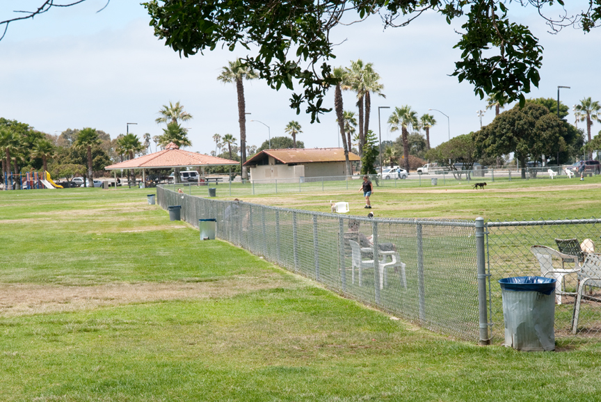 Photo of: Robb Athletic Field