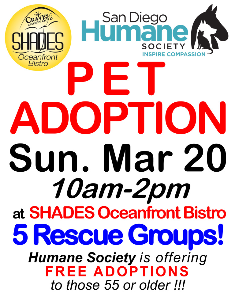 Pet Adoption at Shades