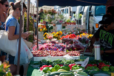 Image result for pacific beach farmers market