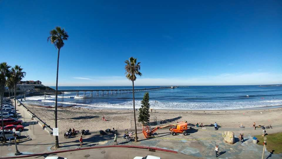 Ocean Beach Christmas Tree (2018)
