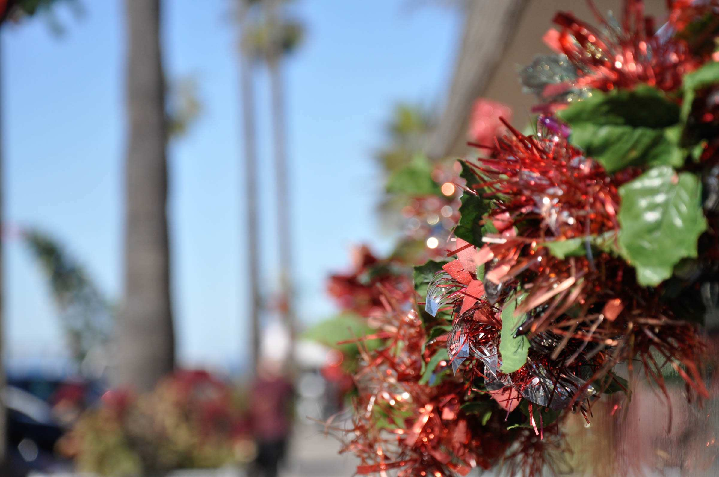 Photo of: OB Craft Fair (Food & Toy Drive)