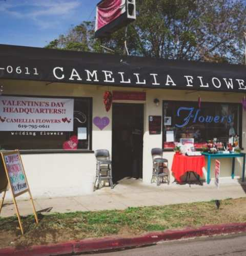 Valentine's Day Pop Up Shop at Camellia Wedding Flowers