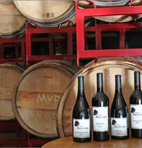 Tapas and Wine at Gianni Buonomo Vintners