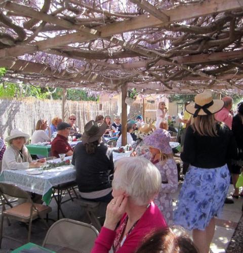 Wisteria Party: OB Historical Society