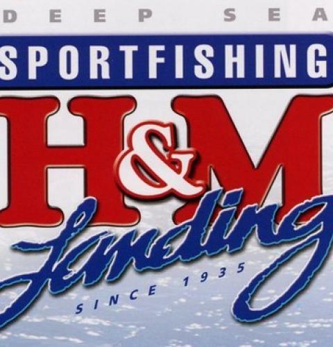 H&M Landing