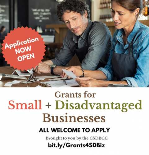 Ocean Beach News Article: Small + Disadvantaged Business Grant Opportunity
