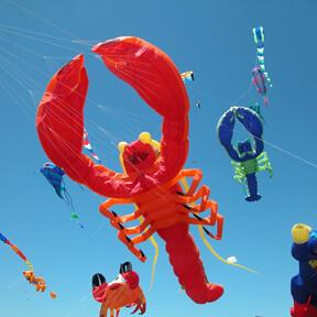 OB Kite Festival