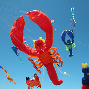 Click to view OB Kite Festival page
